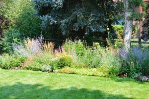 colorful perennial garden Colorado